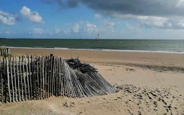 Course solidaire : course au bord de la plage